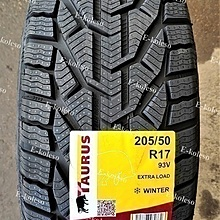 Taurus Winter 205/50 R17 93V
